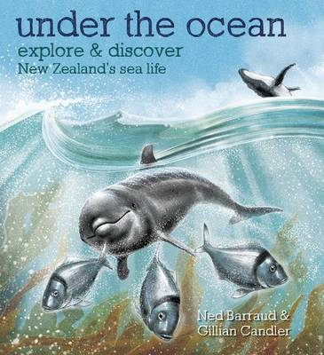Under the Ocean - Explore & Discover New Zealand's Sea Life