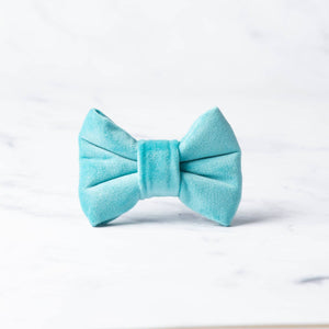 Tommy Dog Bow Tie