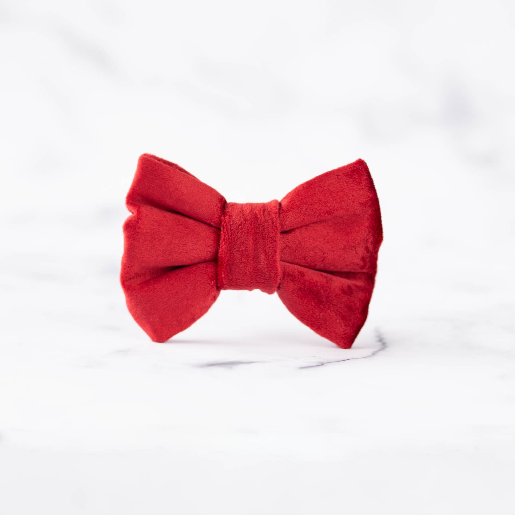 Amore Dog Bow Tie