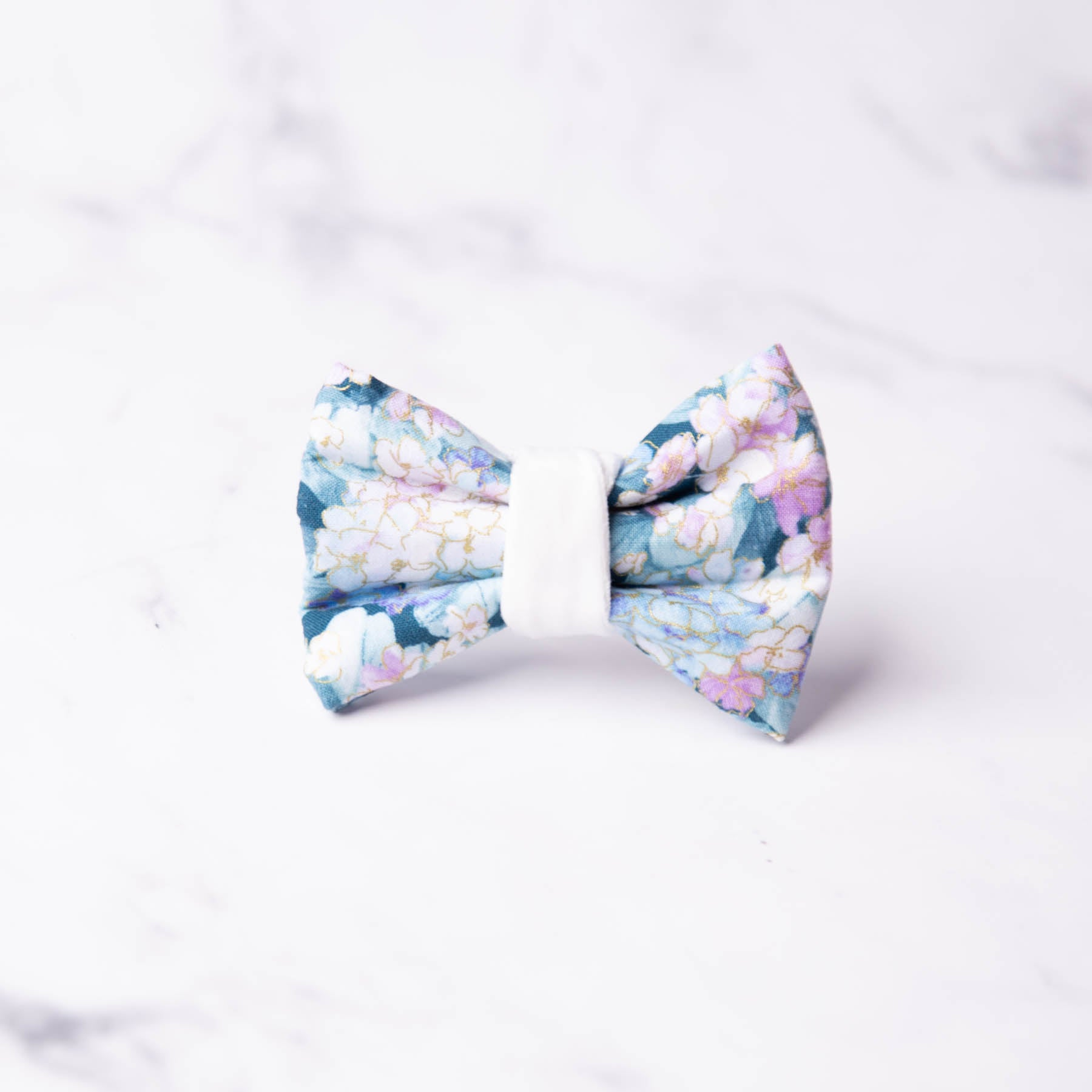 Charlotte Dog Bow Tie