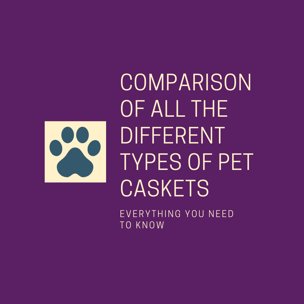 Comparison of All the Different Types of Pet Caskets