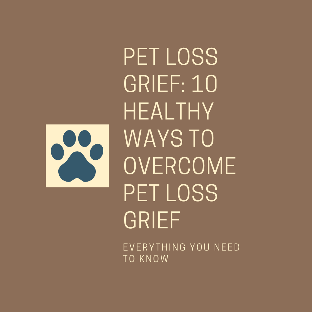 Pet Loss Grief: 10 Healthy Ways To Overcome Pet Loss Grief