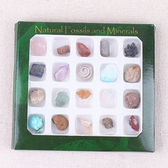 20pcs/Set Crystals And Stones Healing Minerals of Natural Stone Fossils Specimen Polished Gemstones Animal Shell