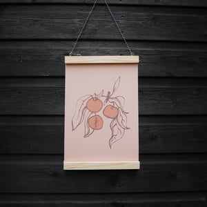 Apple Fruit Tree Plant A4 Print Hand-drawn on pink card recycled paper