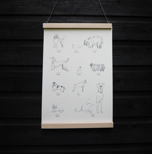 dog breeds print hand-drawn illustration recycled paper