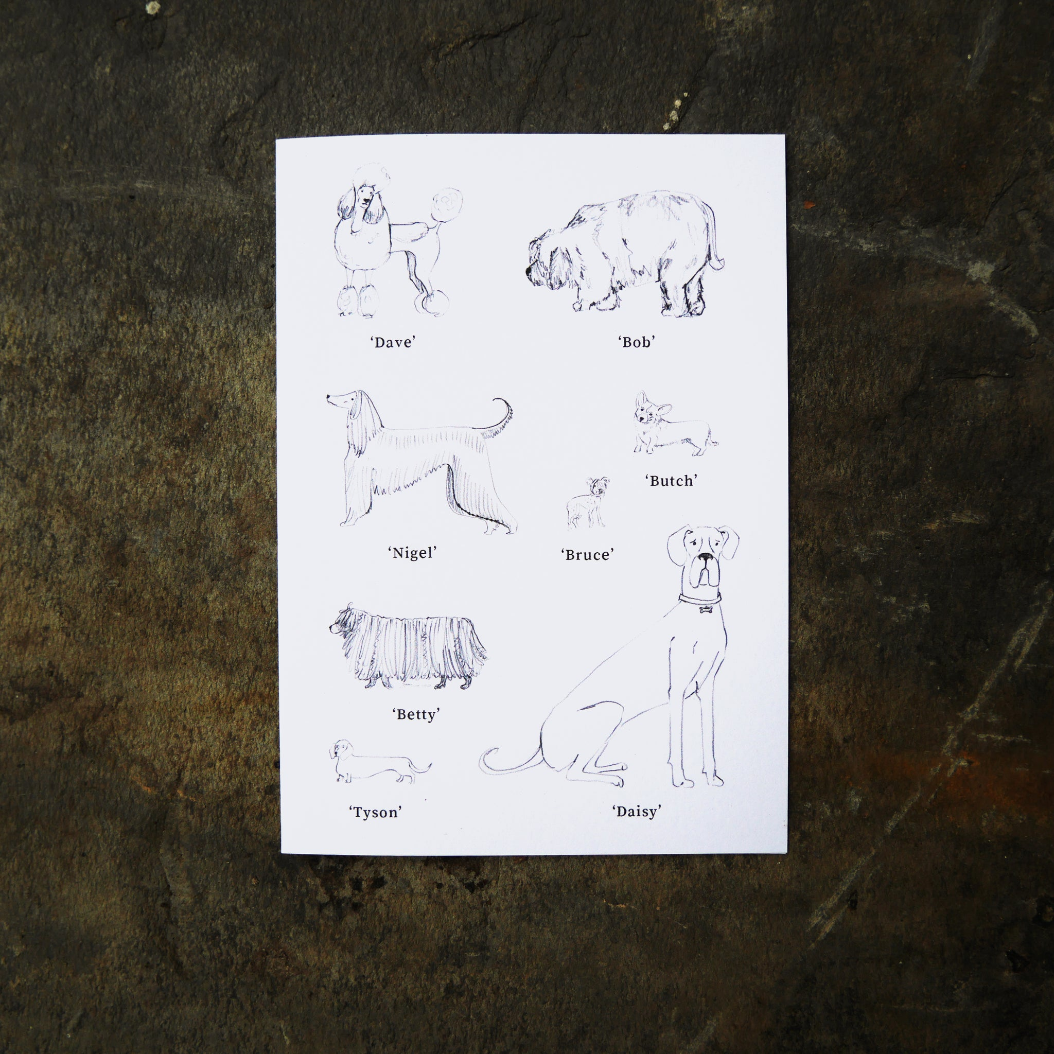 Dog Breeds Card hand-drawn illustration recycled paper