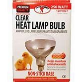 Clear Heat Lamp Bulb