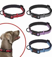 "Halti Collar - Extra Small 8""-12"""