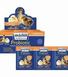 Sav A Chick Probiotic