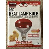 Red Heat Lamp Bulb