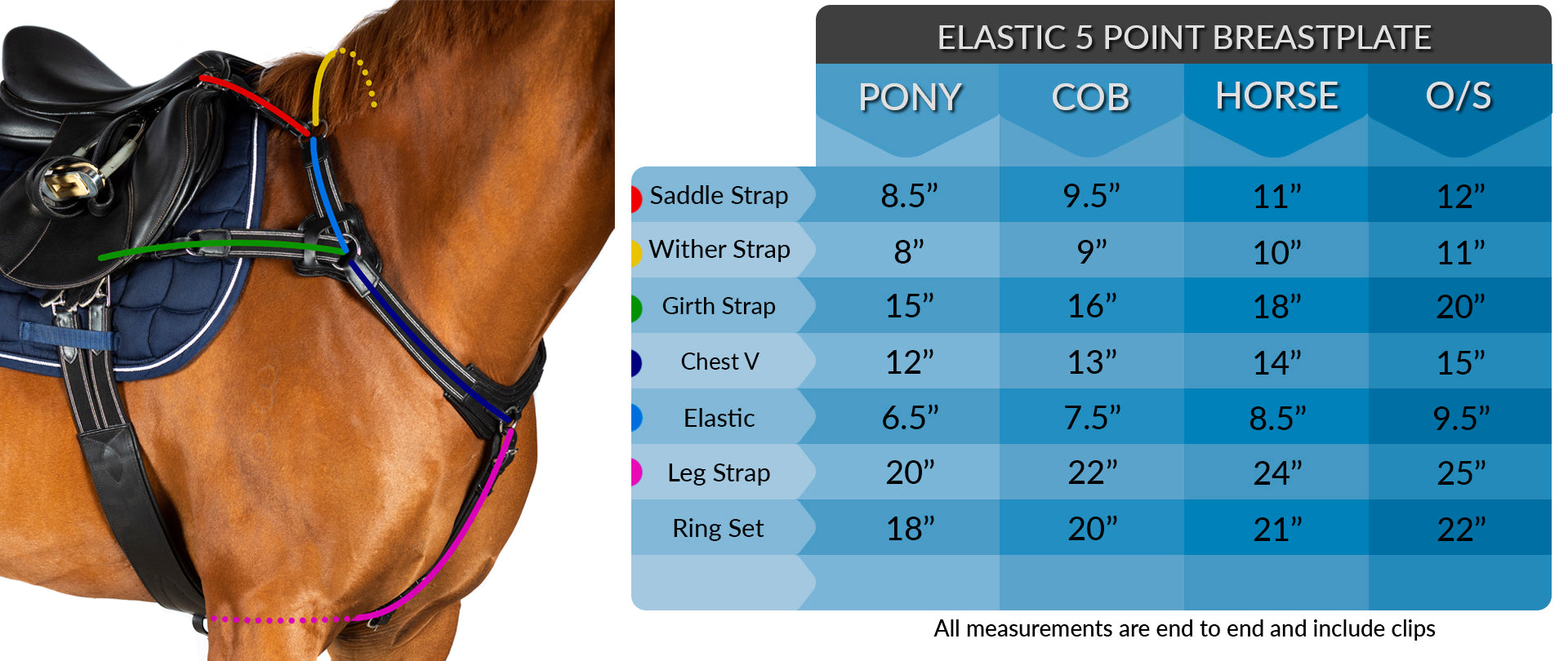 5 POINT BREASTPLATE MEASUREMENT
