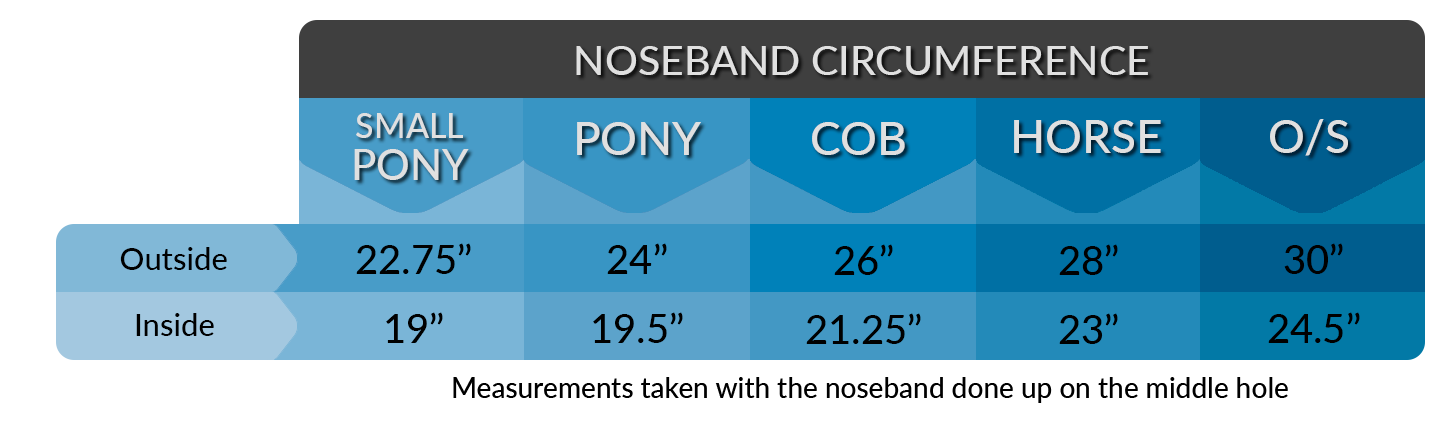 INTERNAL NOSEBAND MEASUREMENT