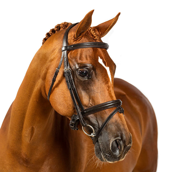 HAVANA SNAFFLE BRIDLE 'Jumper Classic' - Flexible Fit Equestrian LLC