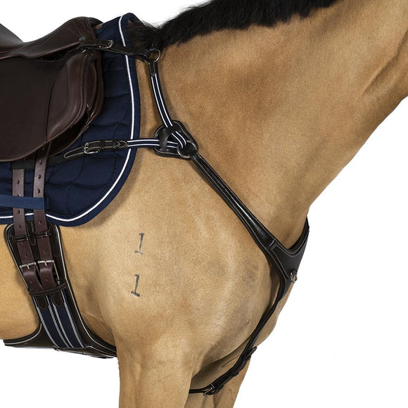 AR 5 POINT LEATHER BREASTPLATE - HAVANA BROWN WITH BLUE AND WHITE ELASTICS - Flexible Fit Equestrian LLC