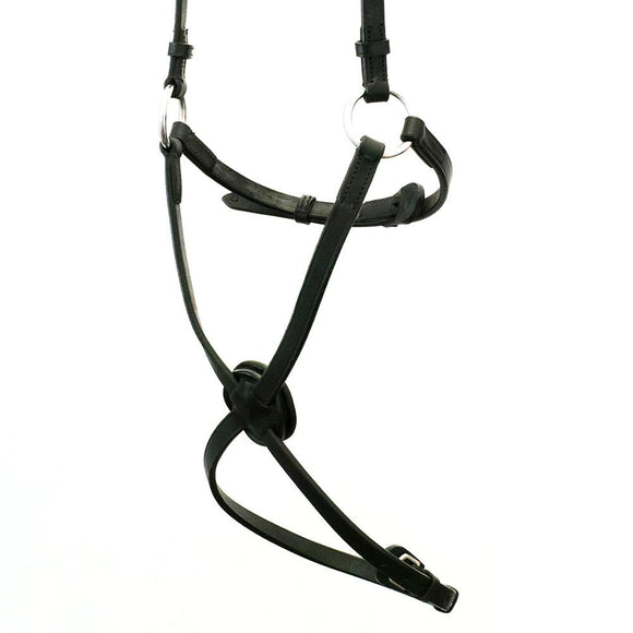 FIGURE 8 - BLACK NOSEBAND