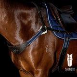 MODIFIED BRIDGE BREASTPLATE - HAVANA WITH BLUE AND WHITE ELASTIC - PRE ORDER