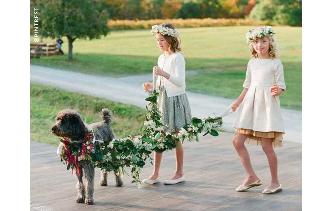 Flower Girls and Dogs