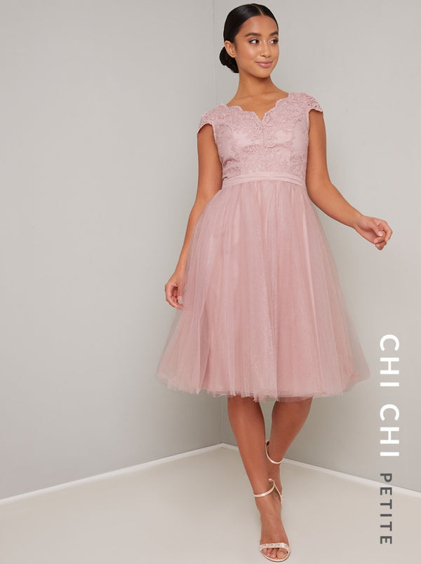 Petite Scalloped Lace Bodice Tulle Midi Dress in Pink