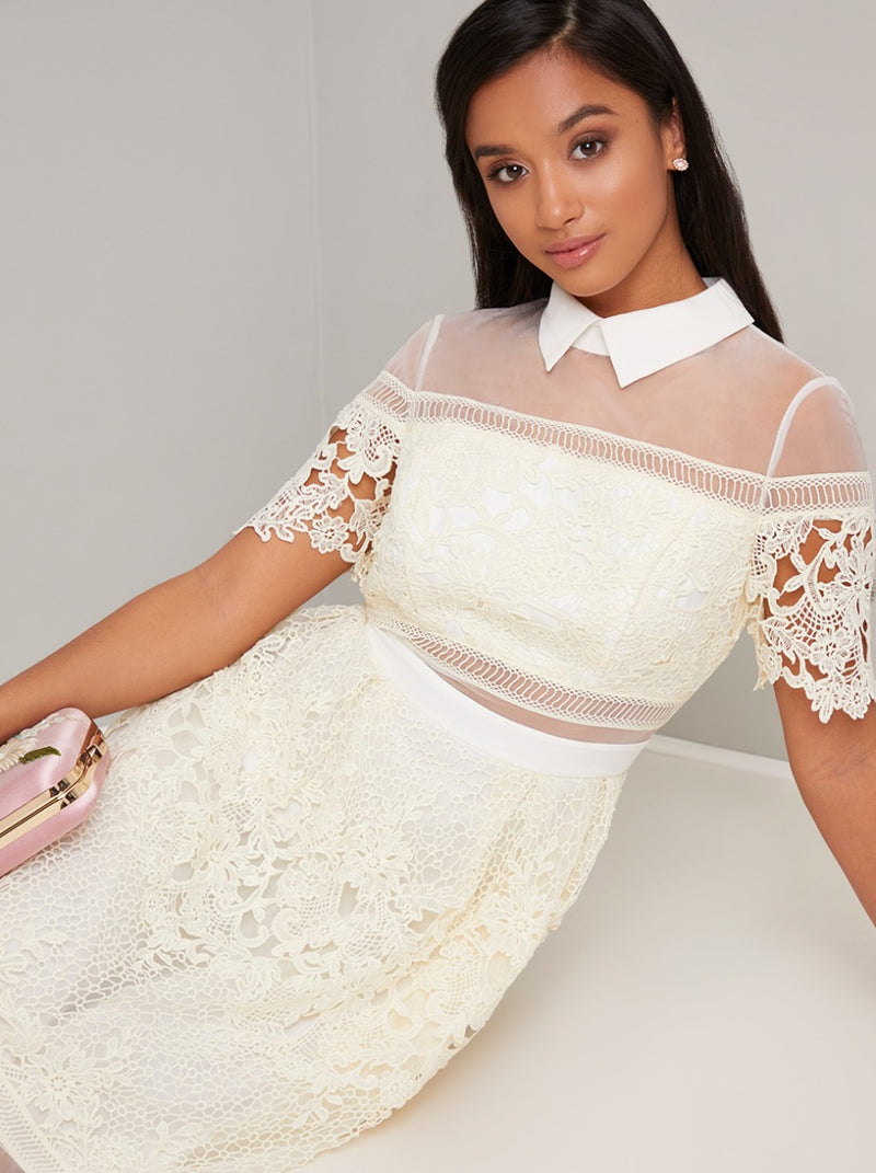 Petite Collar Detail Lace Open Back Midi Dress in Cream