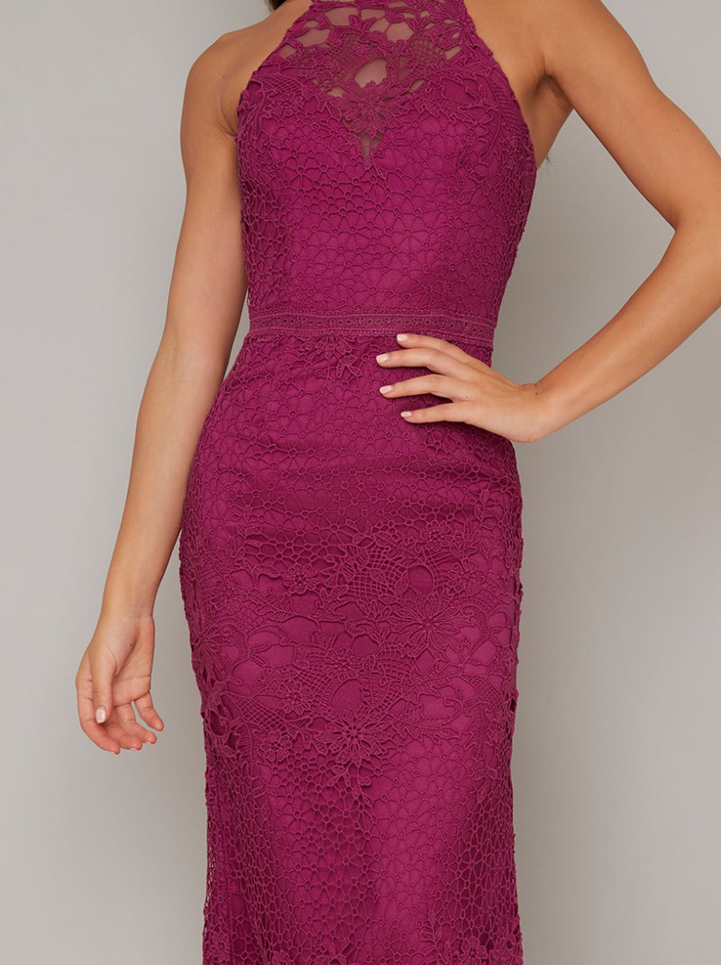 Tall Crochet Overlay Bodycon Midi Dress in Fuschia