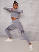 Long Sleeved Crop Mesh Panel Sports Top In Grey