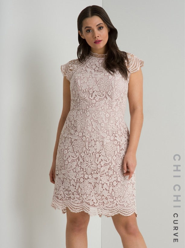 Crochet Bodycon Lace Midi Dress in Pink