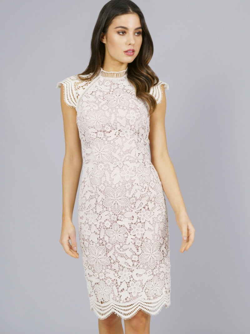 Crochet Lace Overlay Bodycon Midi Dress in Pink