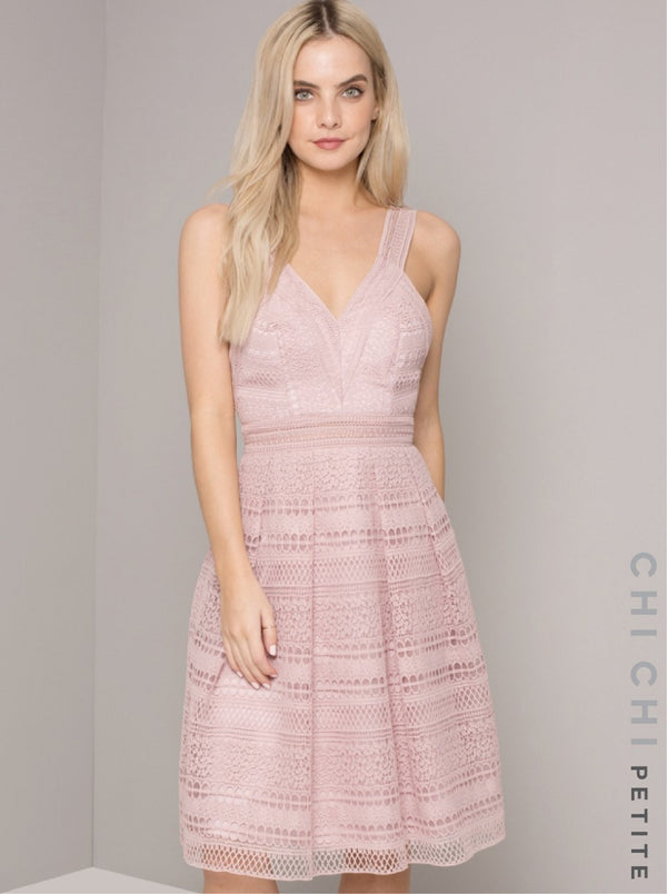 Petite Lace Open Back Midi Dress in Pink