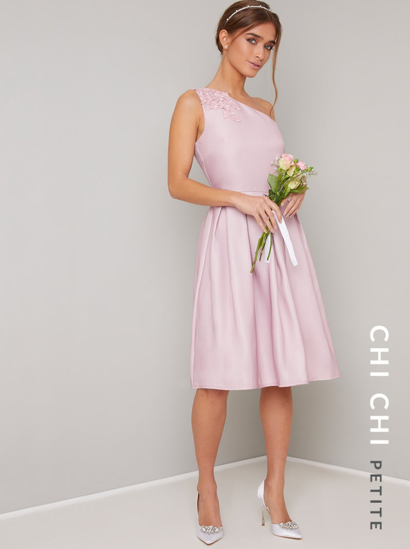 Petite One Should Embroidered Detail Midi Dress in Pink