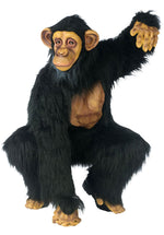 Chimp Costume - Comical