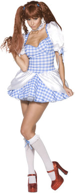 Rebel Toons Dorothy Costume, Fairy Tale Fancy Dress