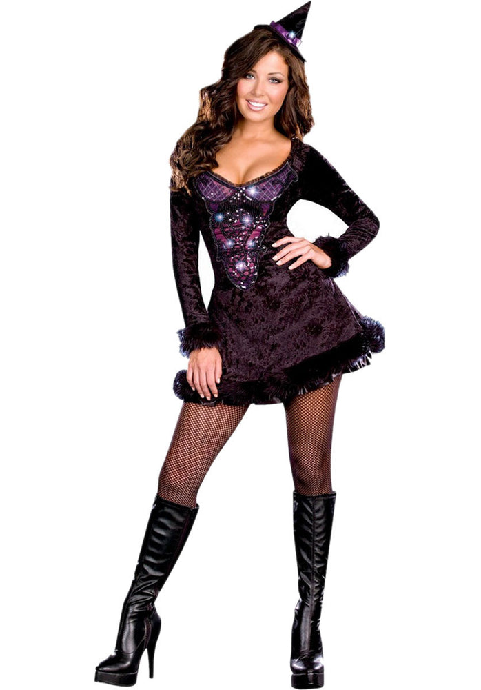 Bewitching Beauty Costume, Halloween Witch Costume