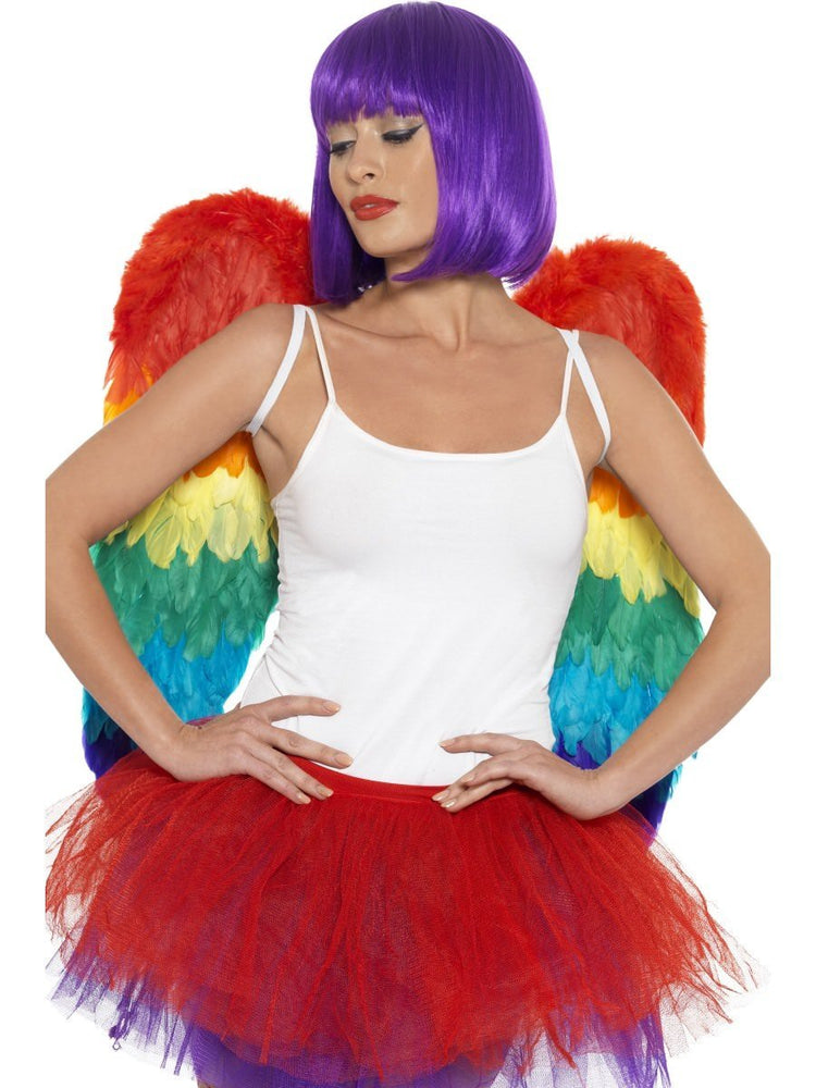 Feather Wings Rainbow 60cm x 60cm