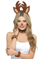 Reindeer Pin Up Kit