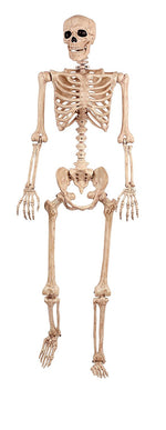 5ft Pose and Hold Skeleton