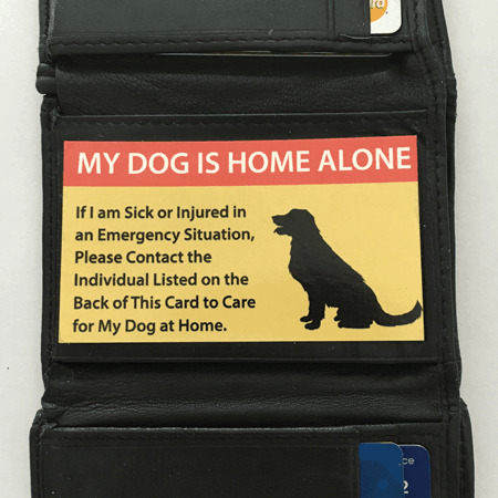 Pet care cards for dogs – 2 dog cards