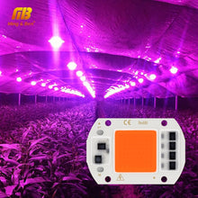Load image into Gallery viewer, LED Grow COB Chip Phyto Lamp Full Spectrum AC220V 10W 20W 30W 50W For Indoor Plant Seedling Grow and Flower Growth Fitolamp