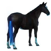 Load image into Gallery viewer, New 100CM Horse Tail USB Lights Chargeable LED Crupper Horse Harness Equestrian Outdoor Sports The Lights Horse Tail