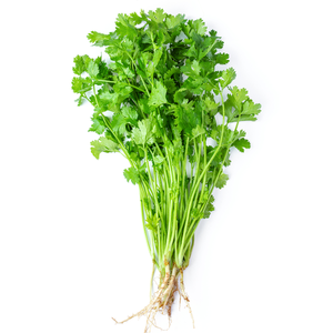 Organic Cilantro / 1 Bunch