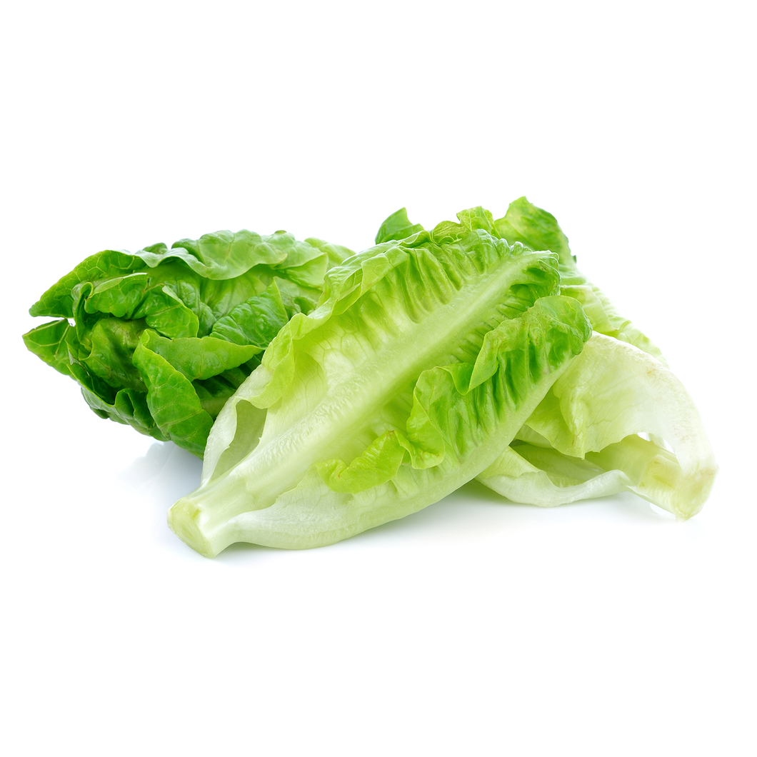 Romaine Lettuce / 1 pc