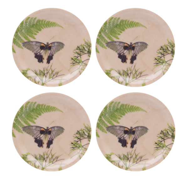 Dill birchwood coasters by Michael Angove