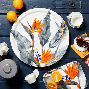 Strelitzia bird of paradise tray