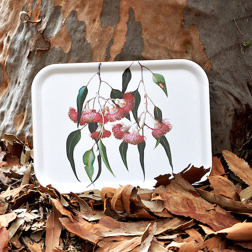 Eucalyptus birchwood tray by Bell Art
