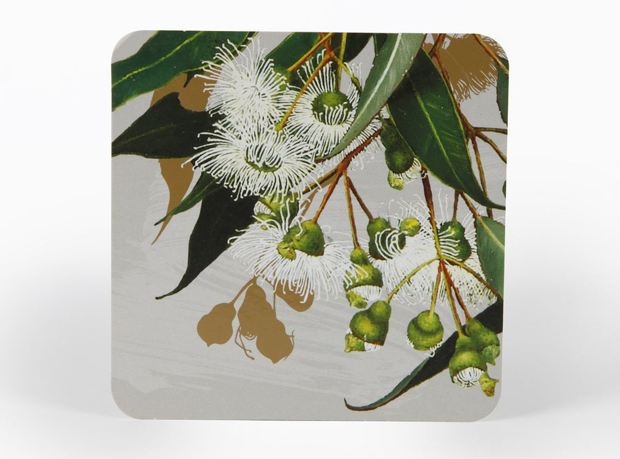 Coasters with Australian native flowers