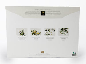 WILDFLOWERS - PLACEMAT SET (4)