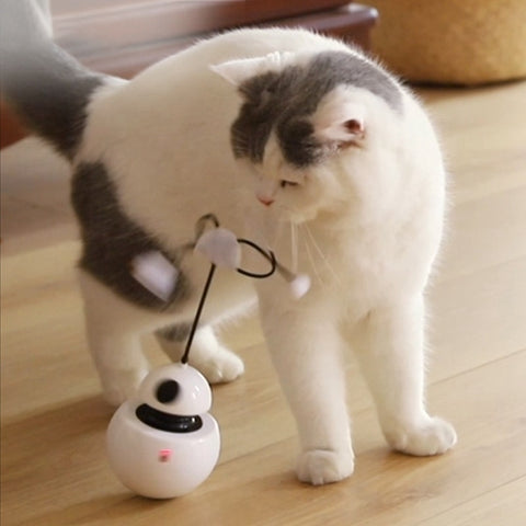 Hot 3 In 1 Cat Multi-Function Electric Rotating Tumbler Toy