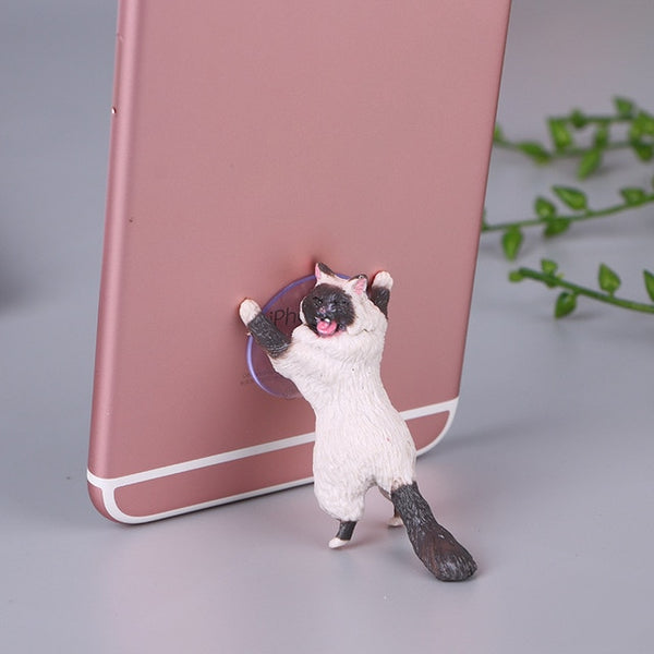 Paws Up Cat(s) Holding Cell Phone