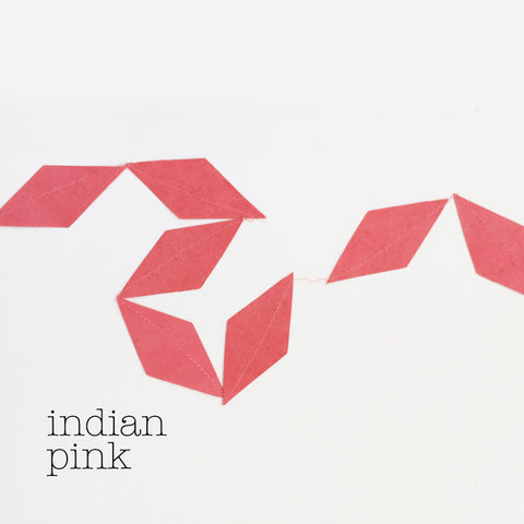 Garland kite indian pink