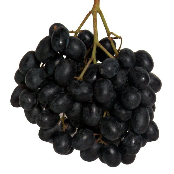 Grapes Imported Black Seedless 500g punnet