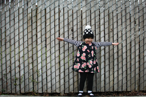 Stripe Floral Raglan Dress
